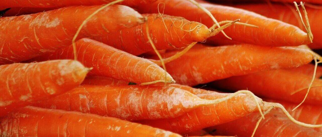 Karotten sind eine hervorragenden Quelle für Betacarotin