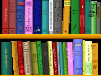 Abbildung eines Bücherregals mit vielen bunten Büchern